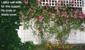 How to Differentiate Trellises, Arbors, Gazebos and Pergolas